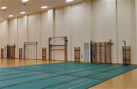 Gymnasium a