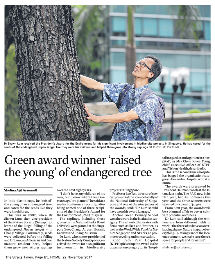 """The Straits Times, 22 November 2017, HomeB5, """" Green award winner 'raised the young' of endangered tree"""" (1)"""